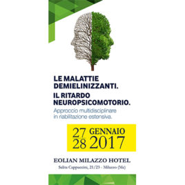 Le malattie demielinizzanti. Il ritardo neuropsicomotorio. <br>27/28 Gennaio 2017
